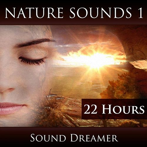 Nature Sounds 1 (22 Hours) by Sound Dreamer