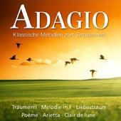 Klassische Melodien zum Entspannen: Adagio by Various Artists