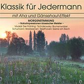 Klassik für Jedermann: Morgenstimmung by Various Artists