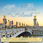 30 Meisterwerke der Klassik, Vol. 3 by Various Artists