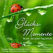 Glücks-Momente by Various Artists