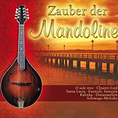 Zauber der Mandoline by Various Artists