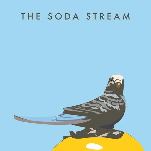 The Soda Stream by Sodastream