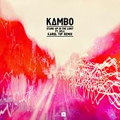 Stand Up In The Light (feat. Ayla) (Karol Tip Remix) by Kambo