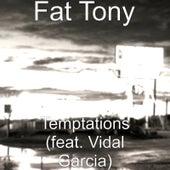 Temptations (feat. Vidal Garcia) by Fat Tony