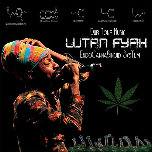 Endocannabinoid System by Lutan Fyah