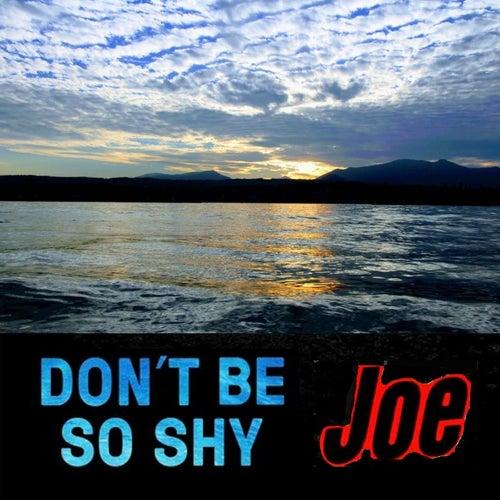 Don't Be So Shy by Joe
