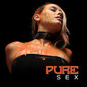 Pure Sex – Sensual Jazz, Erotic Games for Two, Sexy Vibes, Smooth Jazz at Night, Making Love by Instrumental Jazz Love Songs
