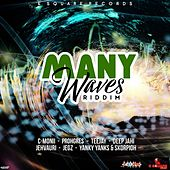Many Waves Riddim by Various Artists