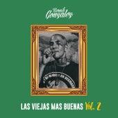 Las Viejas Más Buenas, Vol. 2 by Remik Gonzalez