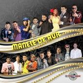 Manele De Aur by Various Artists