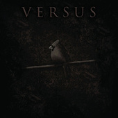 The Cardinal by Versus