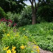 Garden Glade Waltz by The Dreaming