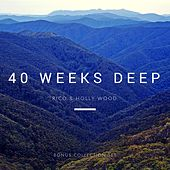 40 Weeks Deep (feat. Holly Wood) by Holandez