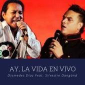 Ay, la Vida (En Vivo) de Diomedes Diaz