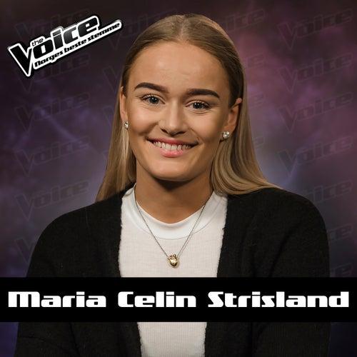 Toxic de Maria Celin Strisland