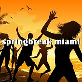 Springbreak Miami by Various Artists