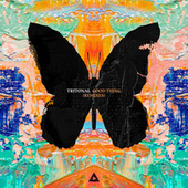 Good Thing (Remixes) by Tritonal