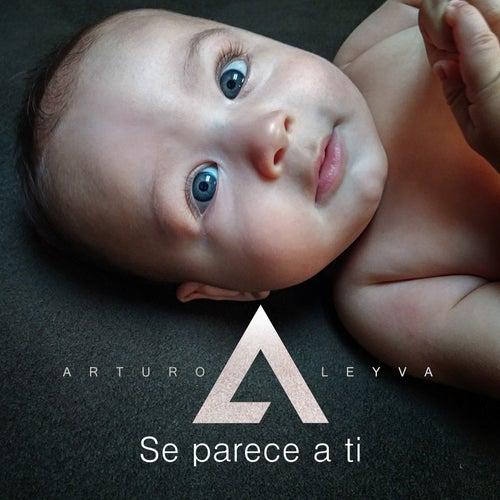 Se Parece a Ti by Arturo Leyva