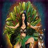 Roar (Quintiero Remix) by Katy Perry