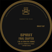 Final Chapter (The Alternative Ending) / Raygun VIP by Spirit