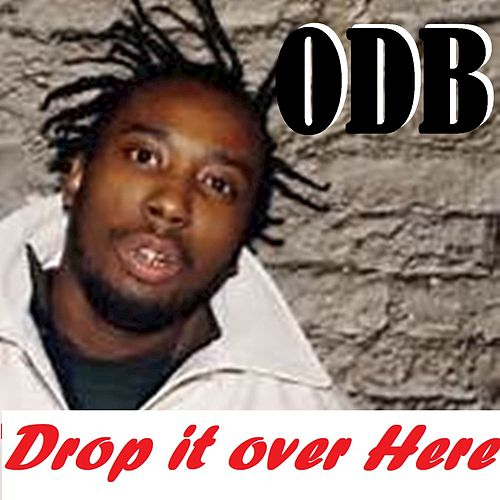 Drop It Over Here by Ol' Dirty Bastard