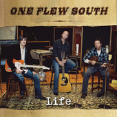 Play & Download Life by One Flew South | Napster