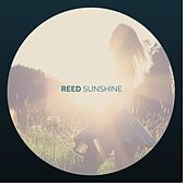 Sunshine by Reed