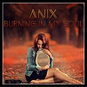 Burning in my Soul by The Anix