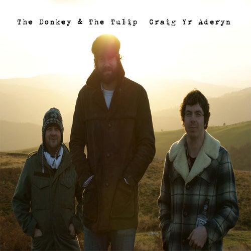 Craig Yr Aderyn by Donkey