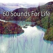 60 Sounds For Life by Massage Tribe