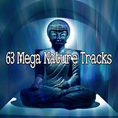 63 Mega Nature Tracks by Exam Study Classical Music Orchestra