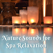 Nature Sounds for Spa Relaxation – Easy Listening, Stress Relief, Spa Beautiful Memories, Soothing Waves by S.P.A