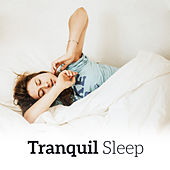 Tranquil Sleep – Soft Sounds to Bed, Relax & Chill, Restful Sleep, Soothing Piano, Music Reduces Stress, Night Sounds by Deep Sleep Meditation