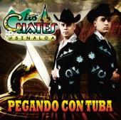 Play & Download Pegando Con Tuba by Los Cuates De Sinaloa | Napster
