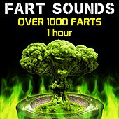 Fart Sounds - Over 1000 Farts (1 Hour) by Fart Fest