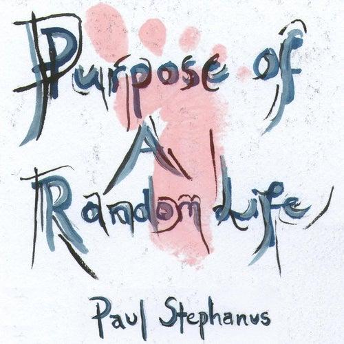 Purpose of a Random Life by Paul Stephanus