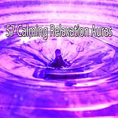 57 Calming Relaxation Auras by Sounds of Nature Relaxation
