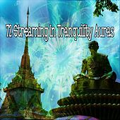 72 Streaming In Tranquility Auras by Zen Meditation and Natural White Noise and New Age Deep Massage