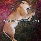 25 Growing Storm Auras by Thunderstorm