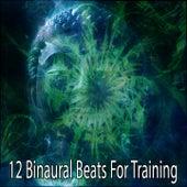 12 Binaural Beats For Training by Binaural Beats Brain Waves Isochronic Tones Brain Wave Entrainment