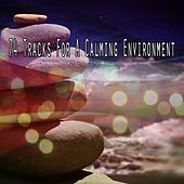74 Tracks For A Calming Environment by Sounds of Nature Relaxation
