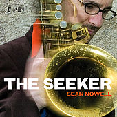 The Seeker by Sean Nowell