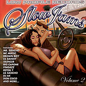 Slow Jams, Vol. 2 by Various Artists