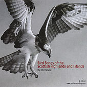 Play & Download Bird Songs of the Scottish Highlands and Islands by John Neville | Napster