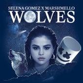 Wolves (feat. Marshmello) von Selena Gomez