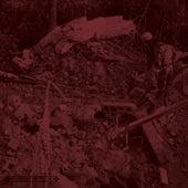 Bunkerterror by Various Artists