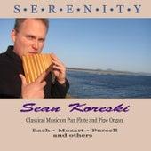 Serenity by Sean Koreski