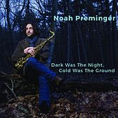 Dark Was the Night, Cold Was the Ground by Noah Preminger