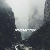 Introspection by KA